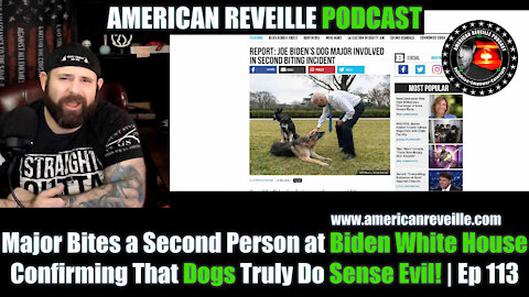 Major Bites a Second Person at Biden White House Confirming That Dogs Truly Do Sense Evil! | Ep 113