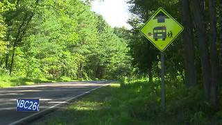 Driver injured after rear-ending school bus in Menominee County - Video