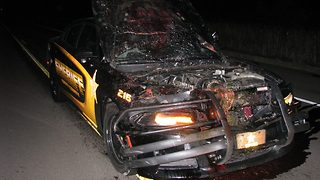 Isanti County Sheriff's Deputy Doesn't Swerve, Hits Deer While Responding to Call - Video