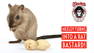 CMS | Neeley Becomes A Rat Bastard