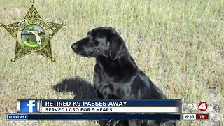Rretired Lee County K9 passes away - Video