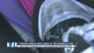 Detectives search for thieves who smashed car windows at local park