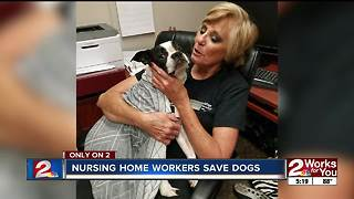 Nursing home workers save dogs