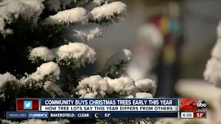 Community buys Christmas trees early this year