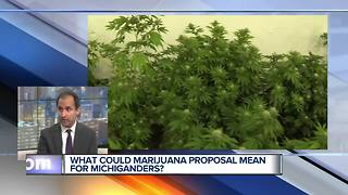 Legalizing Recreational Marijuana in Michigan:  What's Included in Proposal? - Video