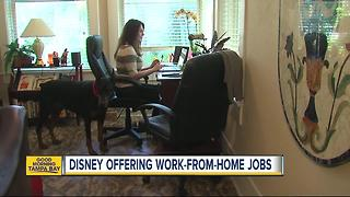 Disney offering work-from-home job opportunities - Video