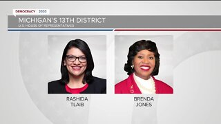 Tracking several key races in Michigan's primary election