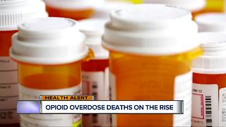 Opioid overdose deaths on the rise - Video