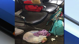 Search for girl's stuffed animal lost in FLL airport rampage - Video