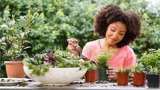 Step Up Your Gardening Game Without Spending A Dime