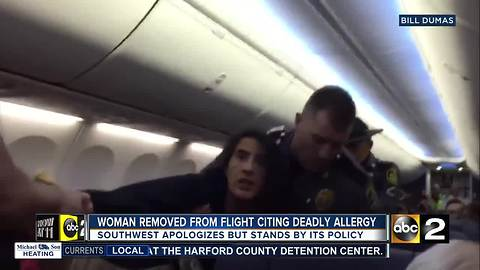 Woman Removed From Southwest Flight Because Of Deathly Dog Allergy