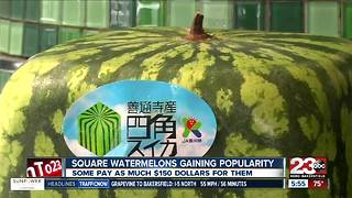 Square watermelons? Some are selling for $150! - Video