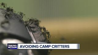 Avoiding camp critters - Video