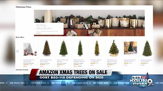 Fresh-cut Christmas trees available now on Amazon