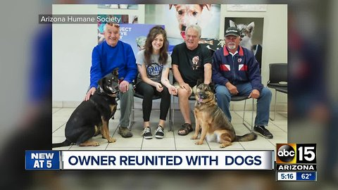 Valley service member reunited with dogs