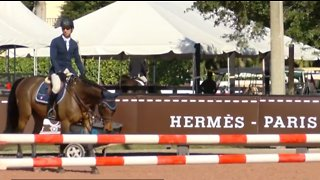 Winter equestrian festival brings in millions