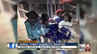Serial Theft Suspect Wanted - Video