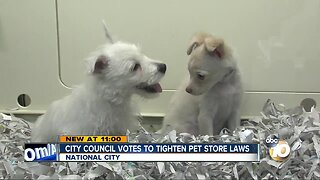 National City takes step to place more restrictions on pet stores