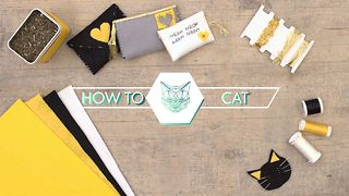How To Cat: The ultimate catnip bribe - Video