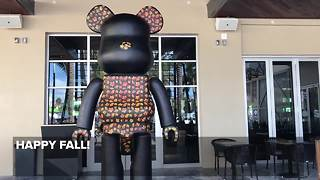 Giant Delray bear changes colors every season - Video