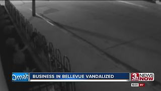 Security Company in Bellevue vandalized - Video