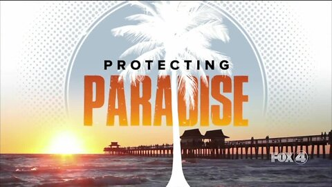 Protecting Paradise: A Fox 4 Special