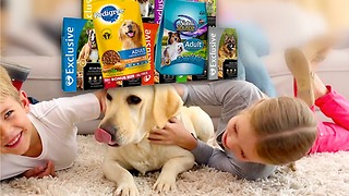 Pet Food Confusion: 3 Tips to Save Some Cash - Video