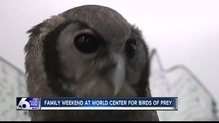 Family weekend at World Center for Birds of Prey