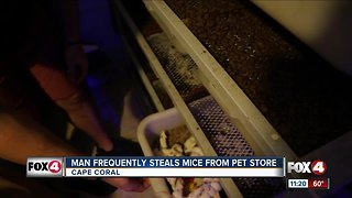 Customer caught stealing mice from pet store for months