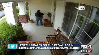 Porch Pirates on the Prowl