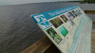 Specks of green algae found at Indian River Lagoon - Video