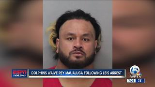 Miami Dolphins player Reynold Maualuga arrested on battery charge - Video