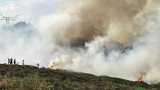 Fire Sparks in Dorset Nature Reserve - Video
