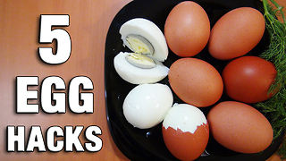 5 amazing egg hacks you need to know - Video