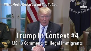 Trump In Context #4 MS13 & Illegal Immigrants