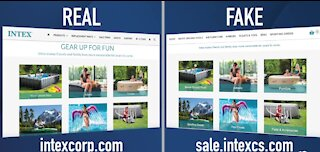 12 Scams of the Holidays: Fake websites to look like real ones