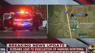 Man arrested after saying armed person was at Harkins Norterra 14 - Video