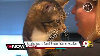 Ohio woman reunited with cat three years after he ran away - Video
