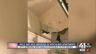 City shuts down Northland apartment complex - Video