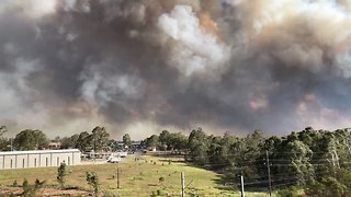 Large Bushfire Tears Through Southwest Sydney - Video