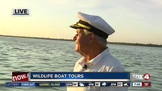 Wildlife Boat tours with Captain Jack - Video