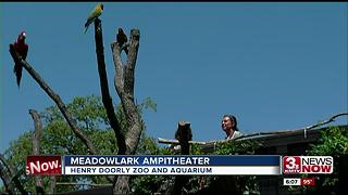 New meadowlark amphitheater at zoo - Video