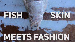 Wearing fish.... Yes, it's a thing and it's awesome - Video