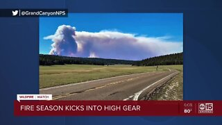 North Rim shutdown at Grand Canyon for wildfire