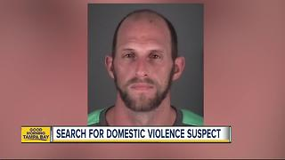 Pasco deputies search for domestic violence suspect - Video