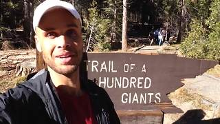 Adam's Adventures: The Trail of a 100 Giants! - Video