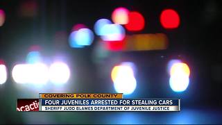 Sheriff: Teens pose on stolen car, arrested after running from deputies - Video