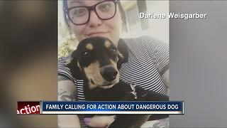 Family seeks justice after they say 'vicious' dog next door attacked, killed puppy - Video