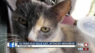 Boy kills cat and threatens to attack neighbor - Video