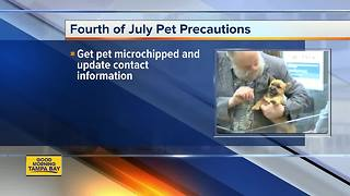 Fourth of July pet precautions